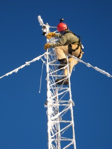 Climbing the 50-meter tower at Summit to check on instruments. Photo: Katrine Gorham